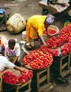 small businesses in africa
