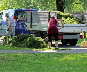 how to become a licensed landscaper
