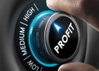 Effects of Profits and Losses on a Small Business