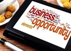 Best Business Opportunities
