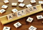 Online Auction Business