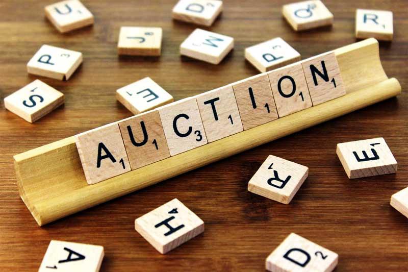 Online Auction Business
